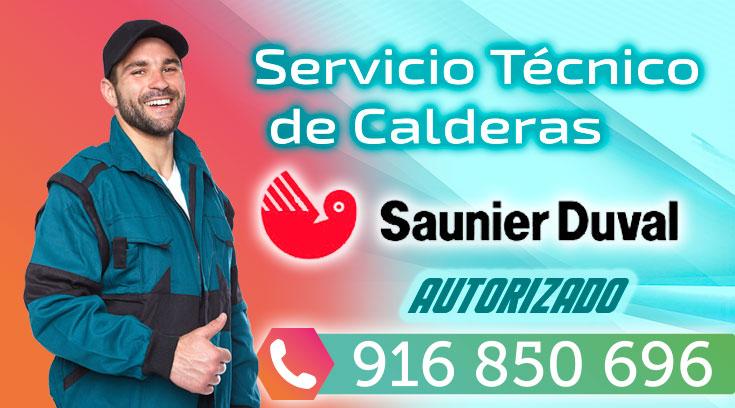Revision caldera saunier duval transportes de paneles de for Tecnico calderas