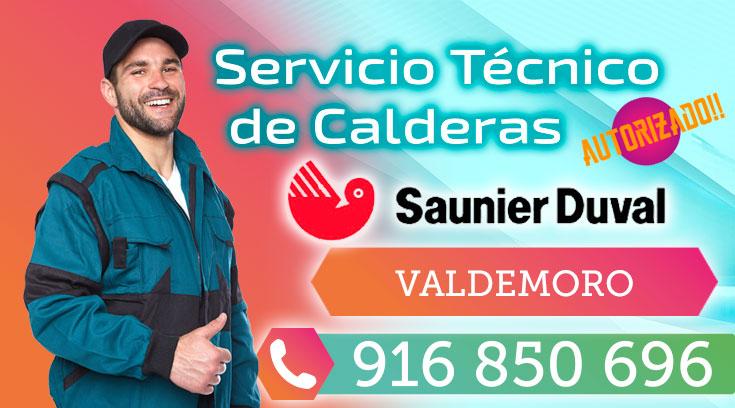 Saunier duval servicio autorizado comunidad de madrid for Caldera saunier duval problemas