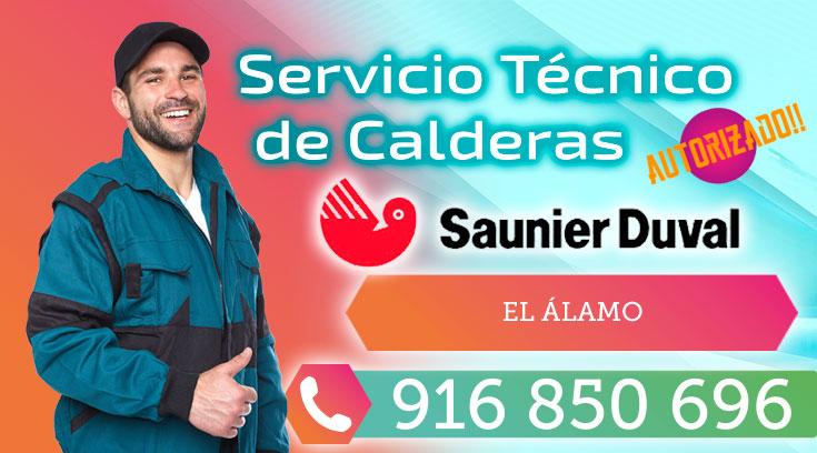 Servicio tecnico Saunier Duval El Alamo