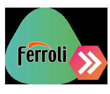 Servicio tecnico Ferroli Madrid