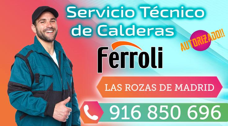 Servicio Técnico Calderas Ferroli en Las Rozas de Madrid